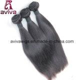브라질 Virgin 머리 연장 100% 처리되지 않은 자연적인 Virgin 머리