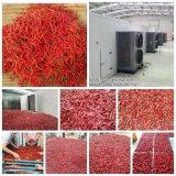Los alimentos industriales Máquina de seco/vegetal y la deshidratación de jengibre