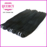 Double por atacado Drawn 8A Grade Highquality Straight brasileiro Human Hair Extensions