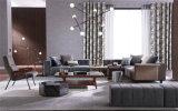 居間の家具、現代組合せのソファー