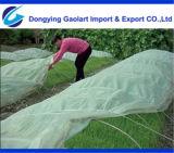 農業カバーのためのPP SpunbondのNon-Woven製品