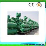 Puissance combinée de chaleur et électricité Gaz naturel 500 kw générateur de biogaz 50kw