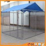 Chenil de chiens de maillon de chaîne en acier galvanisé avec toit