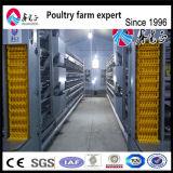 良質の家禽は鶏電池ケージかニワトリ小屋を層にする