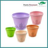 別のカラー植木鉢(KD9901N-KD9905N)