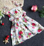 Hot Sale Girl Dress in Fashion Children Clothing for Summer (SQD-127)