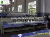15의 헤드는 두배로 한다 Sequin 자수 기계 (TL-915)를