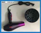 직업적인 전기 헤어드라이어 송풍기