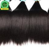 100%加工されていない卸し売りRemyのブラジルの直毛のよこ糸