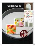Additivi alimentari della gomma di Gellan di alta qualità