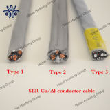 Tipo unito con legami atomici incrociati esperto in informatica, cavo del polietilene di collegare residenziale dell'UL dell'entrata di servizio della lega di alluminio di serie di stile R AA-8030