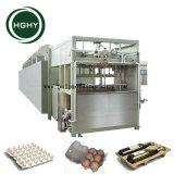 Hghy los desechos de papel 1000 Máquina de bandeja de huevos PCS oscilante.