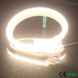 11*22cm Diodo Emissor de Luz Neon Rope Light de 108 LEDs/M