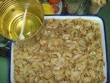 In Büchsen konservierter Pilz mit guter Qualität