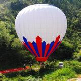 De professionele Ballon Van uitstekende kwaliteit van de Hete Lucht voor Verkoop in China
