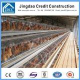 Camera di pollo di due piani della struttura d'acciaio della vernice