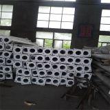 Un meilleur fabricant de la Chine pour l'éclairage Polonais de 9m