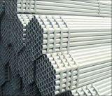 INMERSIÓN caliente de 48.3m m galvanizada alrededor del tubo del acero tubo de acero/Pre-Galón