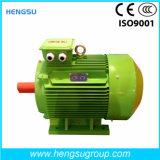 Электрический двигатель индукции AC Ye3 90kw-8p трехфазный асинхронный Squirrel-Cage для водяной помпы, компрессора воздуха