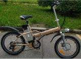 6速度Derailleurの36V 250Wの電気小型のバイク