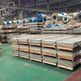 Placa de aço galvanizada largura da espessura 1250mm da prima 0.50mm