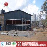 닭 건전지 층 감금소를 경작하는 새로운 가금 장비