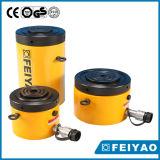De enkelwerkende Cilinder van de Borgmoer Pankcake (fy-CLP)