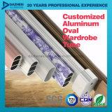 Aluminium 6063 Profiel van het Aluminium van de Buis van de Garderobe het Ovale Ronde