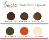 Goochie Microblading Paste pigmentiert Augenbraue-permanente Verfassungs-Tinten
