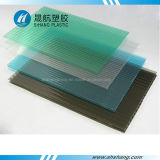 Feuille de toit creux en polycarbonate à double paroi givré avec protection UV