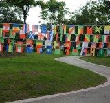 Drapeaux de drapeaux de drapeau nationaux personnalisés pour les activités extérieures fantastiques