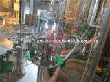 De automatische PLC Prijs van de Machine van het Flessenvullen van het Mineraalwater van de Controle