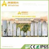 Het nieuwe 25W 5 LEIDENE van de Garantie van de Jaar ZonneLicht van Intagreted met de batterij van het Lithium en het Slimme Controlemechanisme van de Tijd