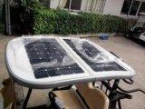 La energía solar 2 plazas de golf eléctrico del coche