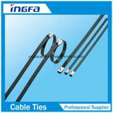 De epoxy Met een laag bedekte Band van de Kabel van het Roestvrij staal van de Weerhaak van de Ladder Enige voor OpenluchtGebruik