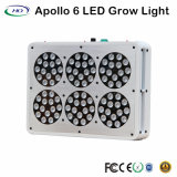 Design clássico Apollo 6 LED Grow Light para ervas e flores