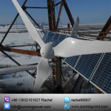 Turbina Eólica de Uso Marítimo de 600W