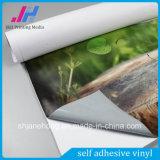 Vinyle auto-adhésif de collant de véhicule de fabrication de la Chine, vinyle auto-adhésif imprimable, collant coloré de véhicule de PVC