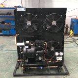 Typen kondensierendes Gerät öffnen mit Kailaili halbhermetischem Kolben-Kompressor für Kühlraum