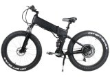 48V 500W elektrisches fettes Fahrrad-Fett mit vollem Suspention
