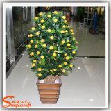Albero arancione dei bonsai artificiali per la decorazione domestica