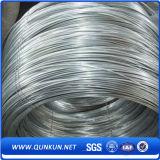 Walzdraht des kohlenstoffarmen StahlSAE1008/SAE1006/SAE1010 im niedrigen Preis