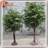 Albero artificiale del Ficus della decorazione calda di vendita