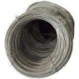 Steel Wire Coil 10b21 Safs para fazer nozes