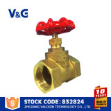 플랜지가 붙은 연성이 있는 철 스톱 밸브 (VG-C10102)