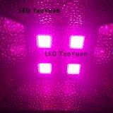 Crecer LED Lámpara de espectro completo de 380-840nm 200W