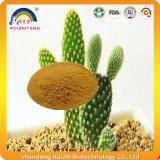 Estratto del cactus dell'opunzia