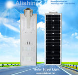 30W 정원 램프 PIR 운동 측정기는 1개의 태양 가로등에서 모두를 통합했다