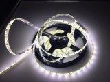 SMD 2835 LED Licht des Streifen-12V