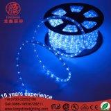 12V kühlen weißes LED-Seil-Licht für im FreienChrismtas Dekoration ab